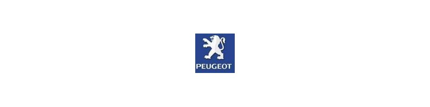 Accesorios 4X4 Peugeot