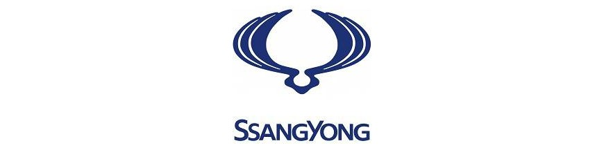 Barras Portaequipajes SsangYong