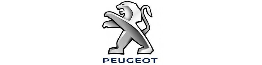 Alfombras a Medida Peugeot