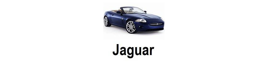 Fundas Exteriores Jaguar