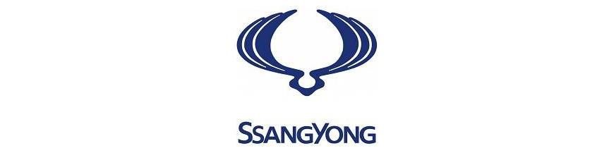 Fundas Exteriores SsangYong