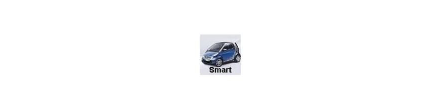 Protectores de Maletero Smart