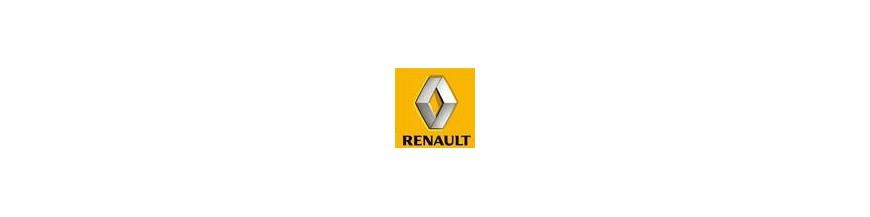 Tornillos / Tuercas Antirrobo para Renault