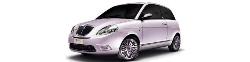 Funda Exterior Cubrecoche Lancia YPSILON (843) de 2003 a 2011