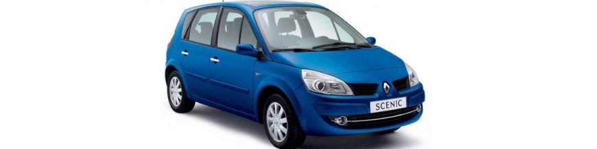 Funda Exterior Cubrecoche Renault SCENIC (II) de 2003 a 2009